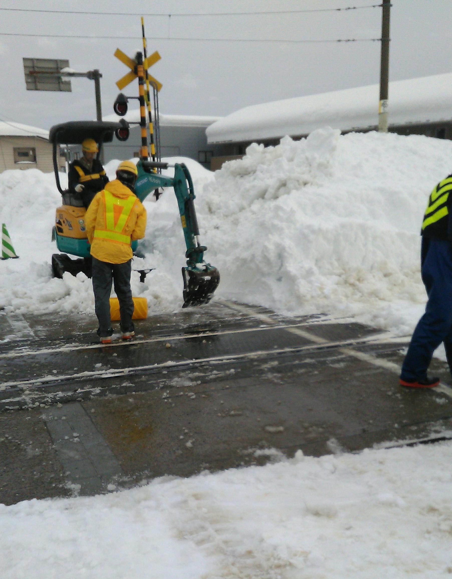 大雪被害 本日の状況